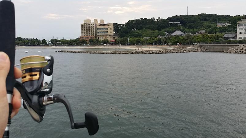 蒲郡市の知柄漁港と吉良町の宮崎漁港(サンライズパーク)で ...